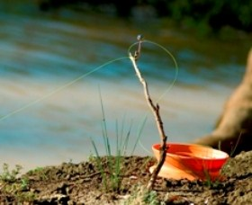 Charleville - Mangalore Warrego River Fishing Spot - Attractions Perth