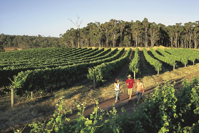Margaret River Caves Wine and Cape Leeuwin Lighthouse Tour from Perth - Attractions Perth