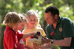 Cleland Wildlife Park - Attractions Perth