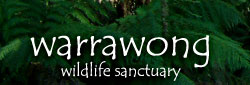Warrawong Wildlife Park - Attractions Perth