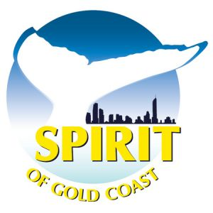 Spirit of Gold Coast Whale Watching - Attractions Perth