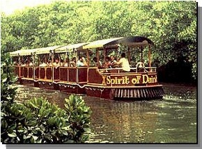 Daintree Rainforest River Trains - Attractions Perth