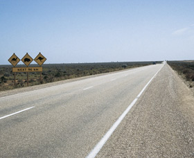 Eyre Highway - Attractions Perth