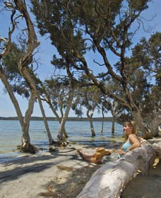Stokes National Park - Attractions Perth