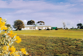 Lucindale Country Club - Attractions Perth