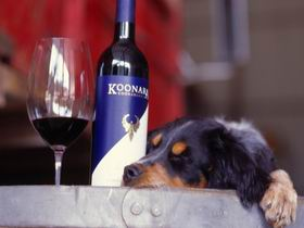 Koonara Wines - Attractions Perth