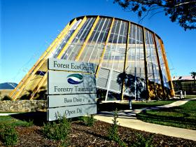 Forest EcoCentre - Attractions Perth