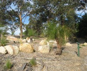 Curtis Park Arboretum - Attractions Perth