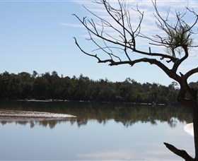 North Coast Holiday Parks Boambee Creek Reserve - Attractions Perth