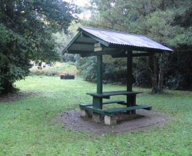 Pine Creek State Forest - Attractions Perth