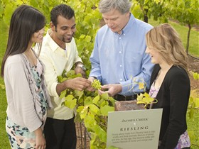 Jacob's Creek Vineyard Tour - Attractions Perth