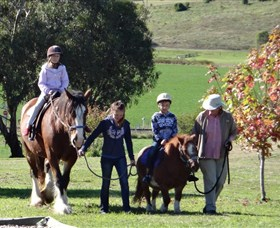 Bathurst Farm Experience - Attractions Perth