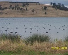 Lake Liddell Recreation Area - Attractions Perth