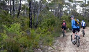 McMahon's Point ride - Wentworth Falls - Attractions Perth