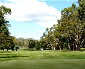 Cooma Golf Club - Attractions Perth