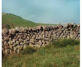 Historic Dry Stone Walls - Attractions Perth