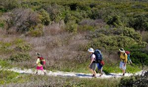 Yuraygir coastal walk - Attractions Perth