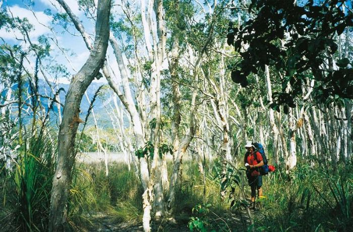 Thorsborne Trail Hinchinbrook Island National Park - Attractions Perth