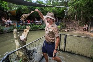Hartley's Crocodile Adventures Day Trip from Cairns - Attractions Perth