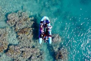Glass-bottom boat tour with Whitehaven Beach - Attractions Perth