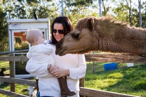 White Ridge Farm - Attractions Perth