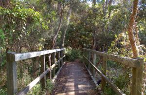 Awaba Bay Foreshore Walk - Attractions Perth