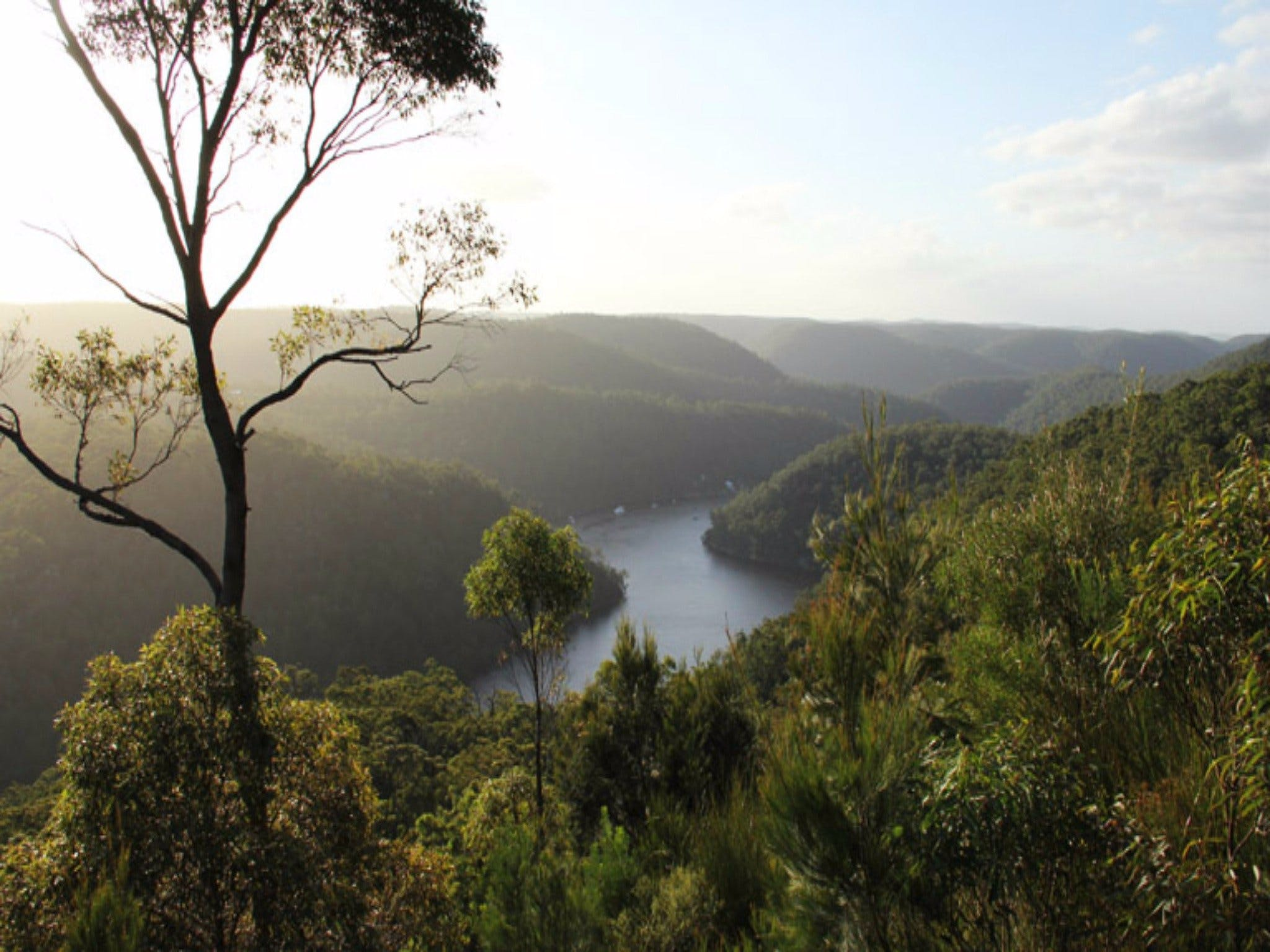 Berowra Valley National Park - Attractions Perth