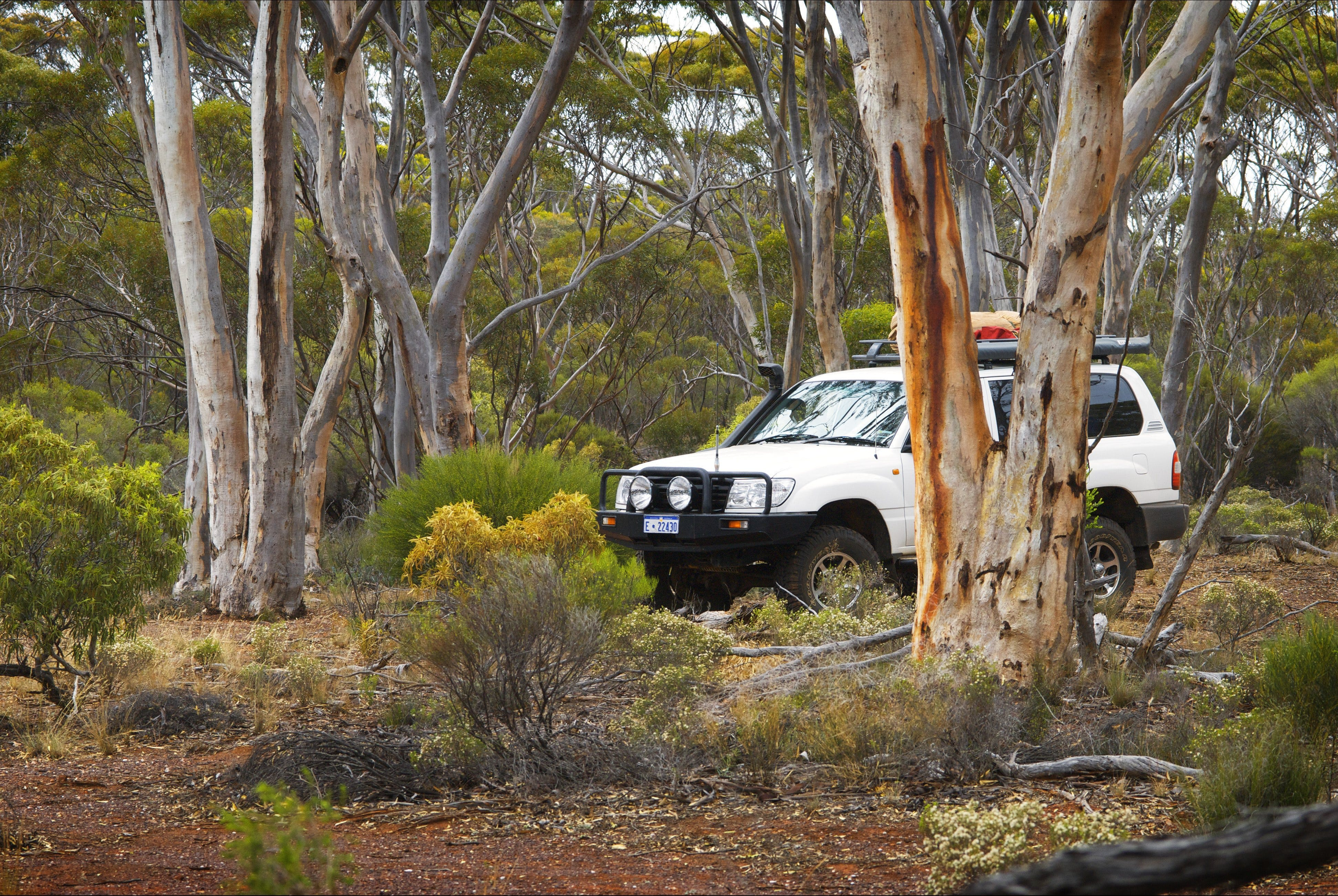 Ravensthorpe Range - Attractions Perth