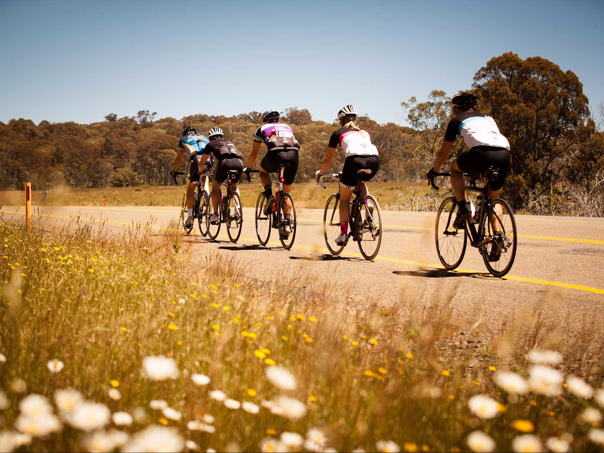 7 Peaks Ride - Dinner Plain - Attractions Perth