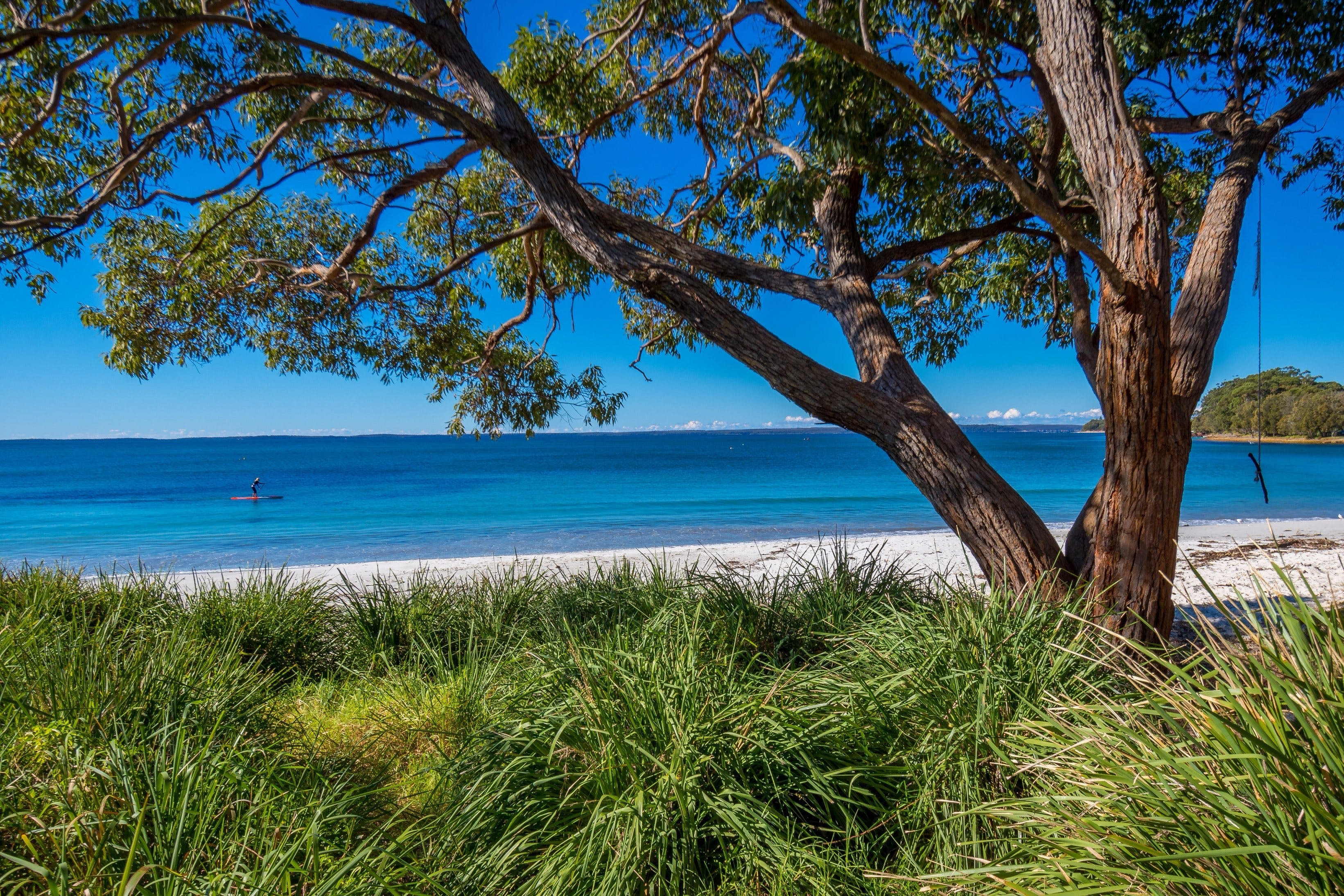 Collingwood Beach - Attractions Perth