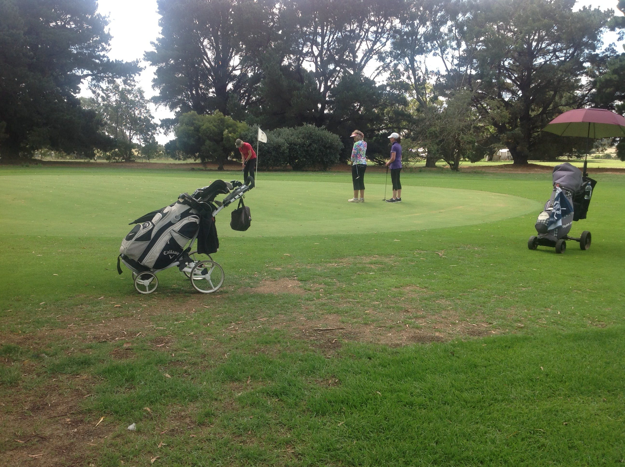 Mortlake Golf Club - Attractions Perth
