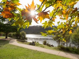 Wentworth Falls Lake - Attractions Perth