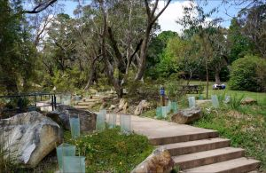 Wentworth Falls picnic area - Attractions Perth