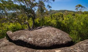 Marramarra Ridge to Smugglers Ridge walking track - Attractions Perth