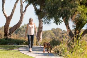 Meningie Walking and Cycling Trails - Attractions Perth