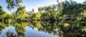 Tumut River Walk - Attractions Perth