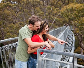 Valley of the Giants Tree Top Walk - Attractions Perth
