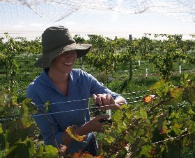 Kingsdale Wines - Attractions Perth