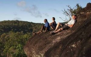 Cooktown Aboriginal Art Tours - Attractions Perth